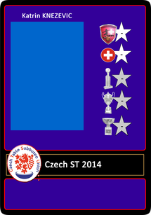 CZECH Subbuteo Team 2014