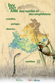 Inventaire des reptiles et amphibiens de PACA