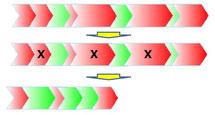 Méthode VSM pour optimiser les flux