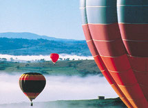 Balloons over the Hunter Valley