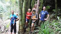 Mitte März 2015: Wasserfälle und Bambuswald von Munduk