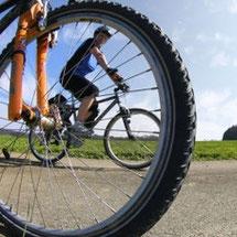 Paradies für Fahrradfahrer  Ganz Franken, aber besonders die Fränkische Schweiz, ist Fahrradfahren besonders wegen der schönen, aber auch an-spruchsvollen Streckenbeliebt.