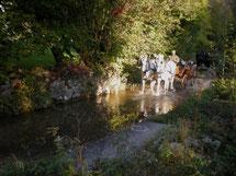 Ausfahrt mit Pferdegespann in der idyllischen Gegend von Leymen