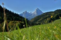 #wiese , #nationalpark , #königssee , #berchtesgaden , #maria germ, #gipfel , #bayern , #watzmann , #reisen , #herbst