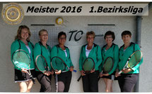 Meister 2016