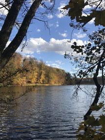Seenlandschaft in der Uckermark.