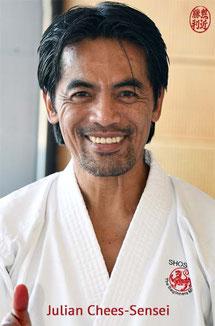Karate Erlach, Julian Chees-Sensei, DJKB-Instructor