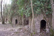 Le sentier du fer au LARLA depuis ARROSA