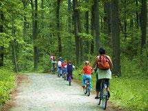 Masurischer Landschaftspark mit dem Fahrrad entdecken, Ermland und Masuren, Polen