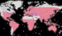 Karte zur Verbreitung der Kuckucke