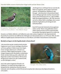 NABU Aufruf zur Wahl Vogel des Jahres 2021