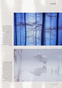 NaturFoto Heft 6/2019, Seite 73