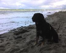 Erholung am Strand