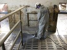 Spaltenboden Spaltenböden Reinigung Rinderhaltung Reinigung aufrauen Aufrauung