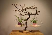 Pflanzenbretter an einer Hasselnussskulptur - Tanja Feldmeier - HOLZ-ISCH