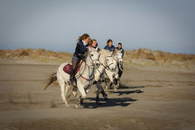 Abrivadoranch: promenade à cheval sur la plage de l'Espiguette, pinèdes et dunes sauvages