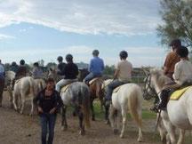 Abrivadoranch: 'balades à cheval en groupe pour des évènements privés, sorties scolaires, incentive entreprises,