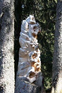 alpenblumen - christina blatter