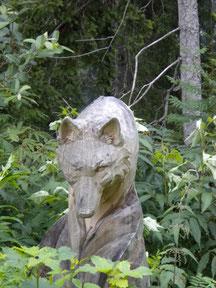wolf - blatter christina