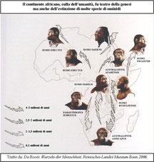 Evoluzione del genere umano.