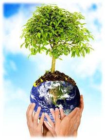 Preservar el ambiente es tarea de todos.
