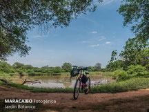 Laguna del Jardín Botánico de Maracaibo