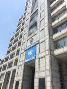 舞台は国連大学