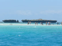 Tagestour nach Wasini Island buchen