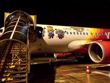 L'avion que pilotait Nico avant hier avec les mignons ^^