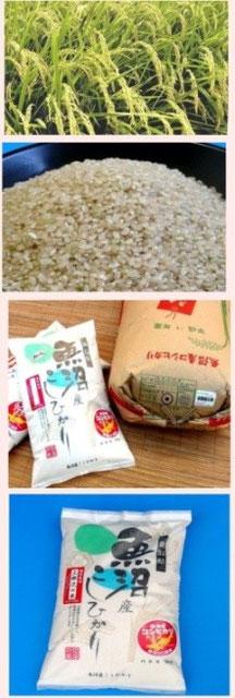 魚沼産コシヒカリ・三郎次の米