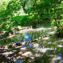 Coverfoto for album 'Sound of Nature'