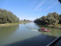 Im Donaudelta in Rumänien