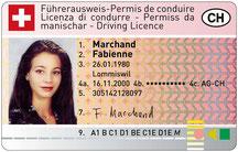 Weg zum Führerschein, Ablauf zum Führerschein, Anleitung, Schritt für Schritt zum Führerschein,