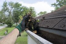 Eine Hand nimmt Laub, Schmutz und Äste aus einer Dachrinne.