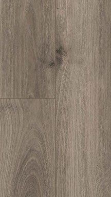 Royal Chestnut Grey