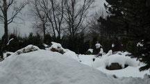 Blick in meinen Garten vom Donnerstag den 15.12.2012 um 12 Uhr Tauwetter immer wieder leichter Regen Naturschneedecke beträgt ca. 25 cm Temperatur bis +2°C