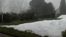 Blick in meinen Garten 11.12.2013 um 13:24 Uhr