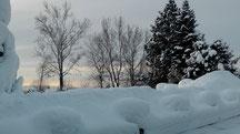 Blick in meinen Garten vom Donnerstag den 13.12.2012 um 09:45 Uhr Naturschneedecke beträgt ca. 30 cm Temperatur -8°C
