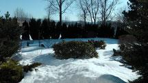 Blick in meinen Garten vom Dienstag den 05.03.2013 um 16:14 Uhr. Sonne pur. Noch ist eine geschlossene Naturschneedecke vorhanden. Temperatur 0°C bis gefühlte +10°C in der Sonne.