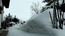 Blick in meinen Garten vom Dienstag den 19.03.2013 um 11:45 Uhr. Temperatur 0°C. Es gab über Nacht etwas Neuschnee +/-10 cm beträgt die Naturschneedecke.