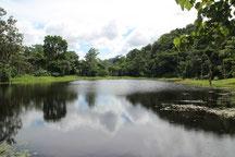 Costa Rica img-1150
