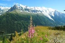 Chamonix 2009 0726 1389