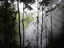Costa Rica 20130717 133601
