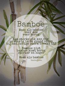 Gedicht Bamboe - Weduwe in Opleiding - Sascha Groen