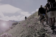 Elke Schroth, Elke Schäfer, Bellevue Hill, Wettingen, Schweiz, Beratung