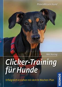Premium-Hundeschule Stuttgart