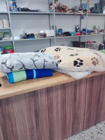 Hundebetten von Mary, Foto: Waller