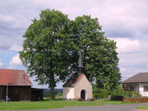 WT Pressath: in Riggau