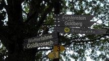 Wanderziel der Goldberg 614 m