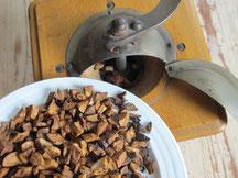 Kaffee-Ersatz aus Eicheln